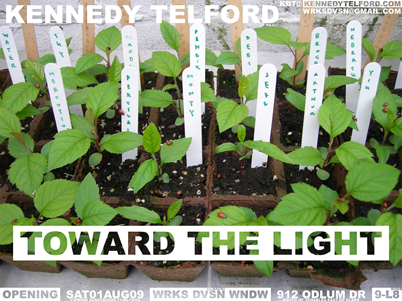 Poster for TOWARD THE LIGHT, art installation by Vancouver artist Kennedy Telford. Small apple trees, grown from the seeds of fruit eaten by the artist, grow in a yellow room. August 2009.