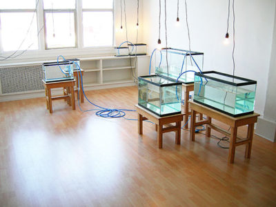Image of filled fishtanks from WATER IS THE FIRST MEDICINE, art installation by Kennedy Telford.